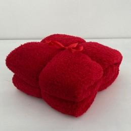Deka Teddy červená 150x200 cm