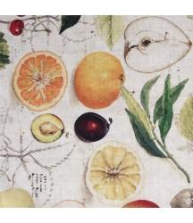 Prostírání 40x30 cm Ovoce